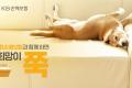 KB손해보험, '희망의 집 38호' 완공식 개최