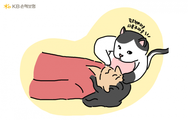"""""""집사야 숨을 쉬라~옹"""" 냥냥이가 알려주는 생명 살리는 심폐소생술"""